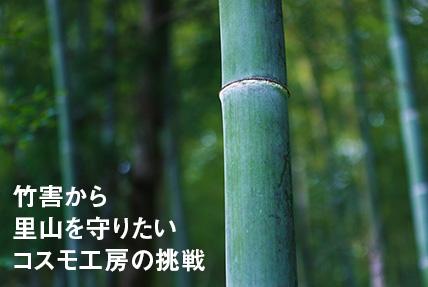 竹害から里山を守りたいコスモ工房の挑戦